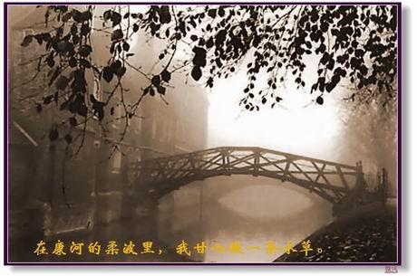 再别康桥  - ︶梦如烟︶ - ︶如烟小轩︶